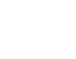 sportarten-judo