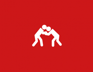zoom-judo